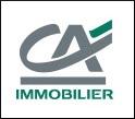 CAimmo-Logo